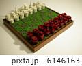 オリジナルチェス 6146163