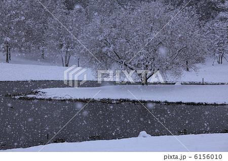 しんしんと牡丹雪舞う 静寂の雪景色 6156010