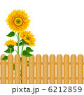 Background with sunflowers 6212859