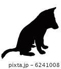 イヌ 柴犬 犬のイラスト 6241008