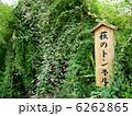 ハギ 向島百花園 萩の写真 6262865