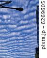 うろこぐも 鱗雲 鰯雲の写真 6269605