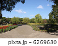 大阪長居公園 大阪長居植物園 植物園の写真 6269680