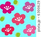 梅の花 6300629