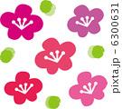 梅の花 6300631