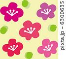 梅の花 6300635