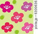 梅の花 6300636