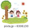 ひまわり 虫取り網 昆虫採集のイラスト 6306130