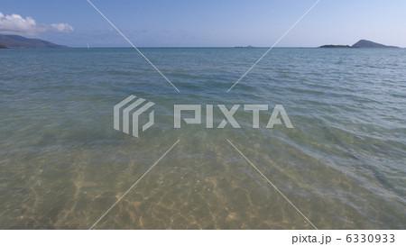 オーストラリアのディンゴビーチ 6330933