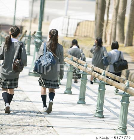 中学生の通学風景 6377779