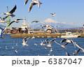 富士山とカモメ 6387047