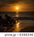 Dazzling morning 6388346