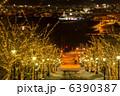 八幡坂 ライトアップ イルミネーションの写真 6390387