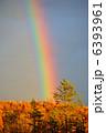 秋の虹 6393961