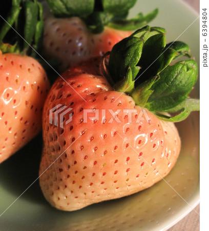 白イチゴ 6394804