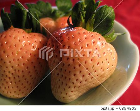 白イチゴ 6394805