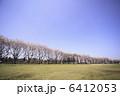 桜と青空 6412053