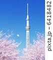桜吹雪 東京スカイツリー スカイツリーのイラスト 6418482