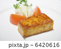 フランス料理の前菜のテリーヌ 6420616
