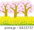春爛漫 6422737