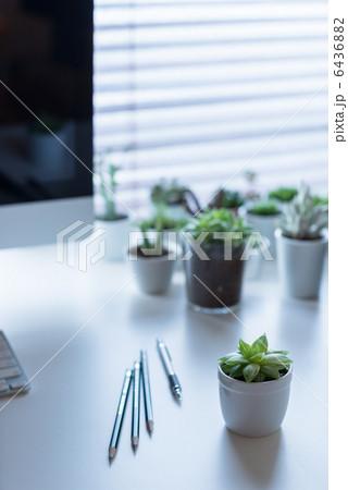 デスクトップ・植物・オフィスの写真素材 [6436882] - PIXTA