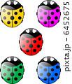 colorful ladybug 6452675