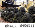 羅漢 仏像 石仏の写真 6459311