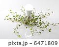 LED LED電球 電球の写真 6471809