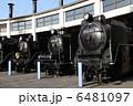 梅小路蒸気機関車館 機関車 蒸気機関車の写真 6481097