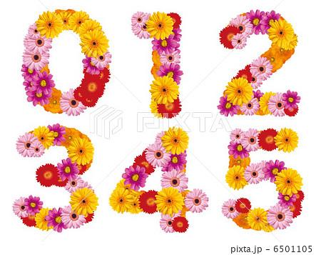 花の数字、数字、ナンバー、花、 6501105