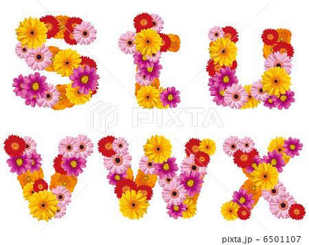 花の小文字、アルファベット、花、英語、 6501107