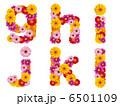 花の小文字、アルファベット、花、英語、 6501109