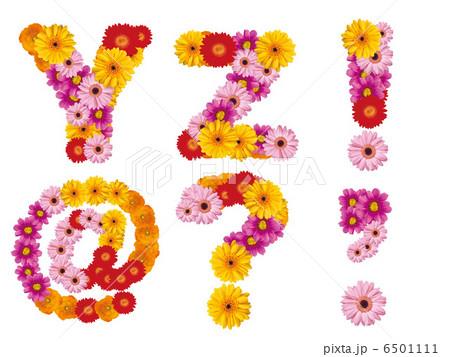 花の大文字、アルファベット、花、英語、 6501111