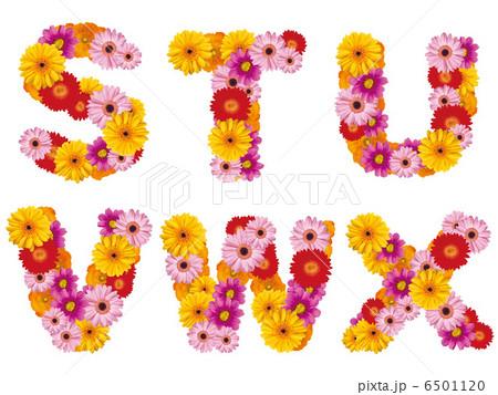 花の大文字、アルファベット、花、英語、 6501120