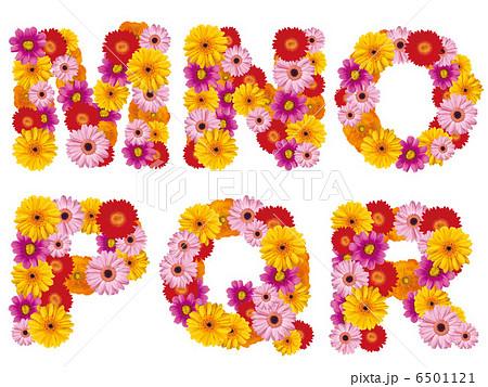 花の大文字、アルファベット、花、英語、 6501121