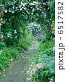 バラ園 ローズガーデン バラの写真 6517582