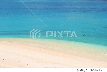 綺麗な海でシュノーケル 6567172