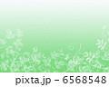 植物のイメージ 6568548