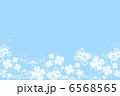 四葉のクローバー 6568565