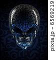 Alien skull 6569219