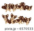 子犬 犬 いぬのイラスト 6570533