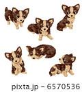 子犬 犬 いぬのイラスト 6570536