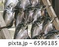 魚干し あじ 6596185