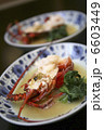 日本食 伊勢海老 食物の写真 6603449
