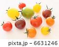 ミニトマト プチトマト 野菜の写真 6631246