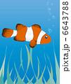 クマノミ 魚 魚類のイラスト 6643788
