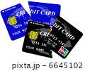 icカード ICチップ クレジットカードのイラスト 6645102