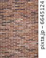 れんが 外壁 赤煉瓦の写真 6645124