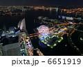 コスモワールド 夜景 観覧車の写真 6651919