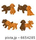 子犬 犬 いぬのイラスト 6654285